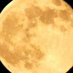 Moon Madness and Lunar Lunacy