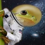 Frogs on the Moon? Seriously?